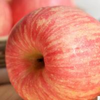 砀山特产红富士水果大沙河新鲜有机苹果