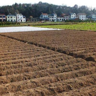 农村土地流转、整理