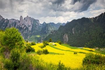 2分钟带你了解田园综合体与乡村旅游的5大区别!