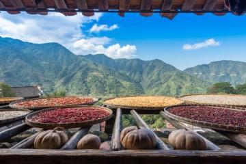 如何发展乡村文化旅游?发展乡村文化旅游的核心要点在哪里?