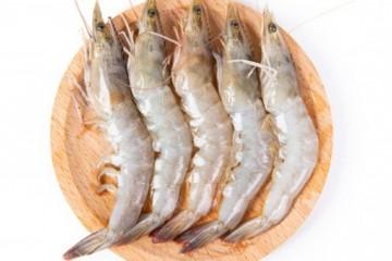 市场上养殖的虾有什么品种?这5个虾种值得推荐!