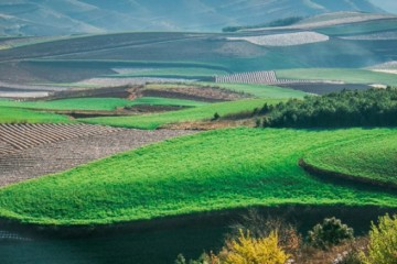 2020年农村土地改革有哪些重点内容?