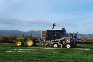 细化实化农业机械化发展措施,确保春耕备耕的机械化支撑