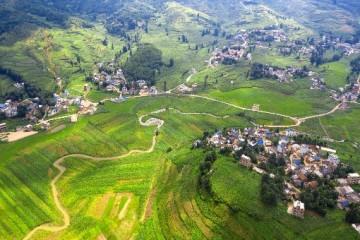 农业投资项目有哪些?农业项目投资哪些好?