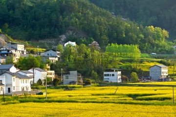 江苏农村宅基地新政策:申请宅基地的标准、条件和流程有哪些?