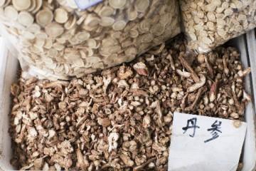 丹参是怎么进行种植的?在药用时有没有副作用?