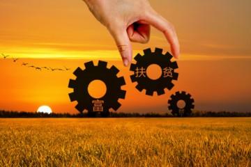 甘肃省供销合作社助力农业发展,为甘肃省脱贫工作作出积极贡献
