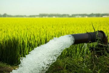 水利部门压实各级责任,保障农村供水安全和春灌需求