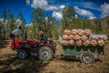 农机合作社靠什么赚钱呢?成立农机合作社有什么补贴吗?