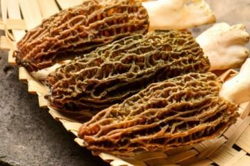 羊肚菌种植技术:怎么建棚?什么时候播种?