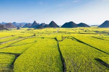 2020气象灾害发生频率增加,保障农业生产任重道远