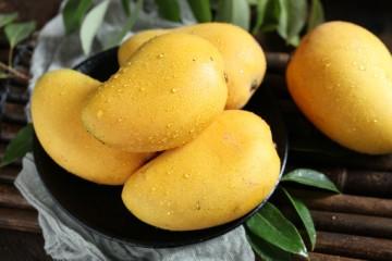 芒果是哪里的特产?食用芒果有什么好处?