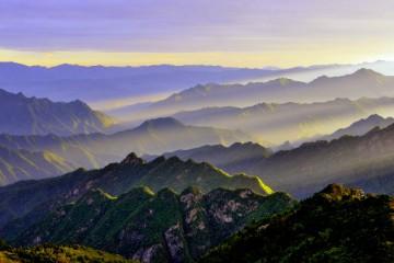 秦岭区域国家级自然保护区保护成效总体良好,生态系统和物种栖息地保持稳定