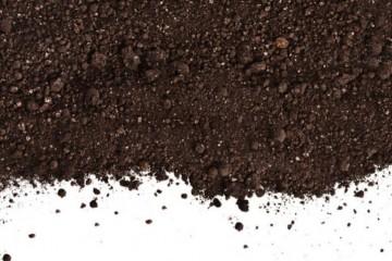 有机肥是什么肥料?它们有哪些优势特点?