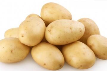 发芽的马铃薯能不能吃?正确的土豆保存方法是什么?