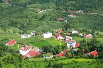 农村中的房子可以抵押贷款吗?农村的房子是否可以买卖?