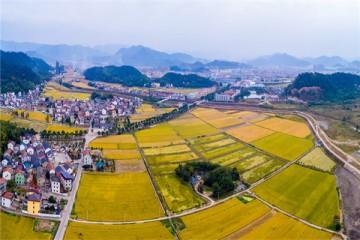 2020年脱贫攻坚在即,陕西省扶贫的具体措施有哪些?