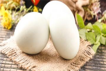 鸭蛋的功效是什么?市场价格多少钱一斤?
