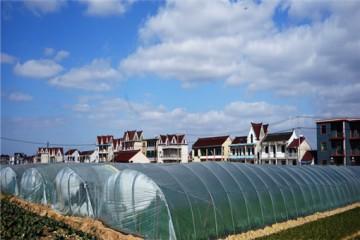 2020年设施农用地使用政策、审批流程有哪些?