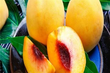 黄桃哪里产的最有名?哪些人不适合吃?