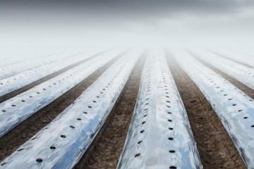 注意!9月1日起,农用薄膜要开始回收了