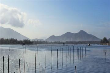 休闲渔业的发展前景怎么样?经营主体条件有哪些?