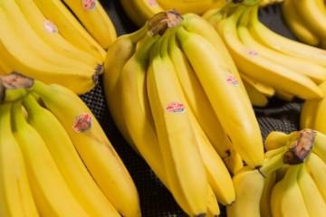 种香蕉用什么肥料最好?具体应该怎么施肥?