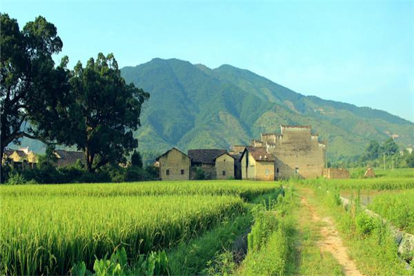 农业旅游扶贫03