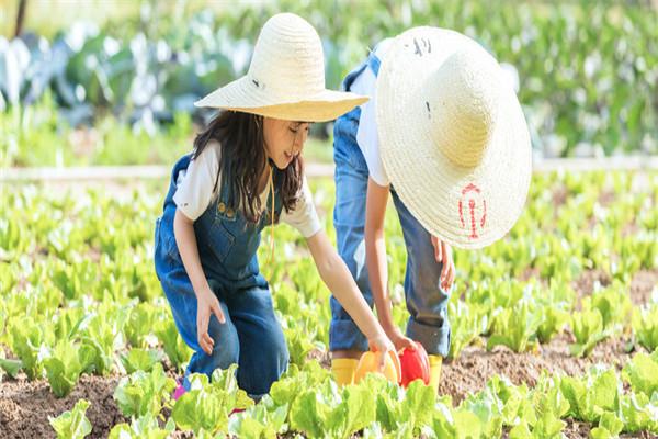 农业旅游扶贫30