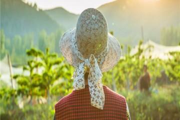 怎么做农产品直播?如何讲好卖点话术?