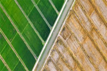 2021耕地保护政策有哪些?重点从这6个方面开展!