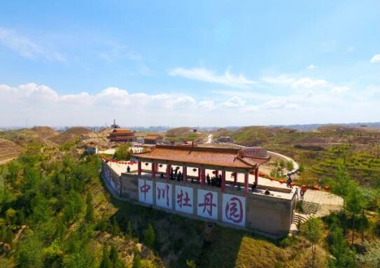 中川牡丹3